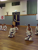 Class supporting the last Go Kyu grading examination. image